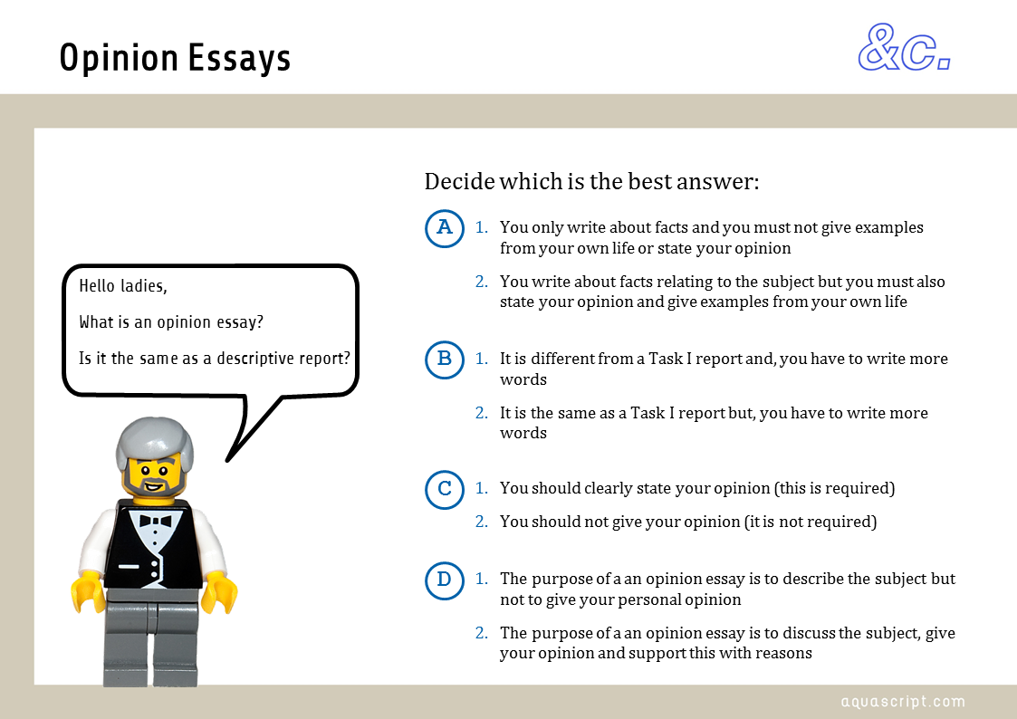 Opinion essay esl lesson plan   Writing And Editing Services